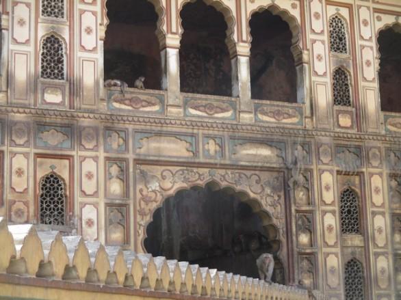 Temples des singes
